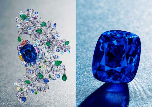 The Top 10 Most Amazing Sapphires Ever Sold At Auction