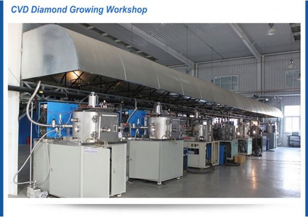CVD-diamond-workshop